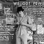 we_got_power_flyer